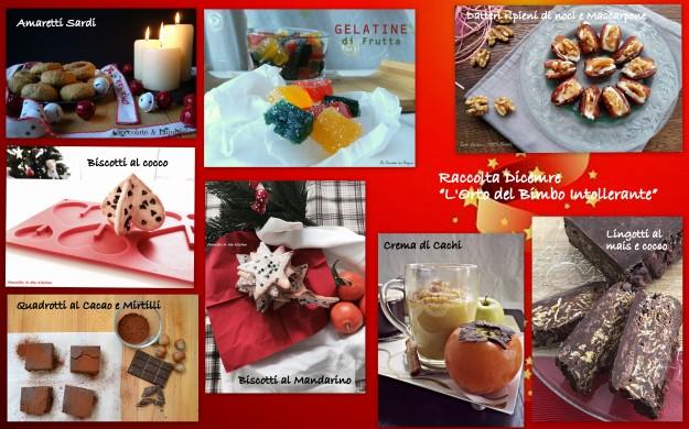 immagini raccolta dicembre4